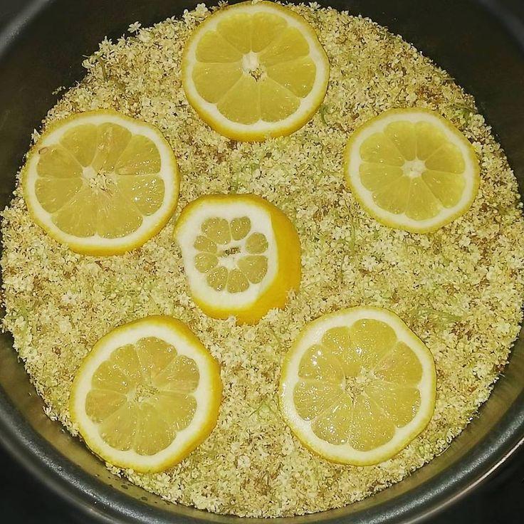Diétás bodzaszörp (cukormentes, tartósítószermentes)