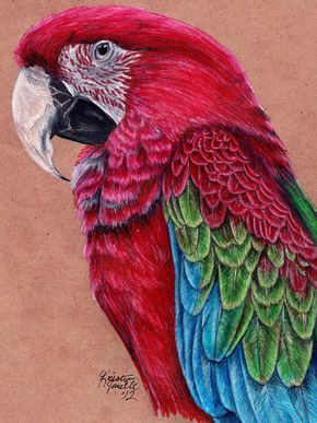 Commission - Green-Winged Macaw by KristynJanelle on DeviantArt