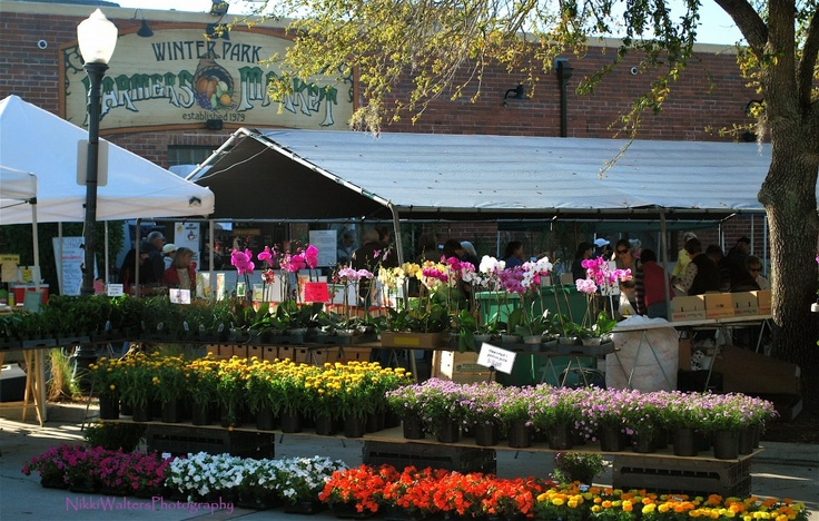 17 best images about i luv the winter park farmers market - Market place at garden state park ...