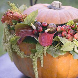 L'autunno è nel pieno: sfruttiamo le zucche decorative, colorate e dalle forme più disparate, per rendere la tavola di Halloween ancora più speciale
