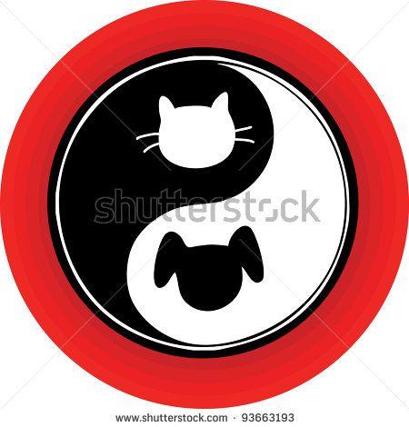 Yoga Dog Cat arkivbilder, bilder og fotografier | Shutterstock