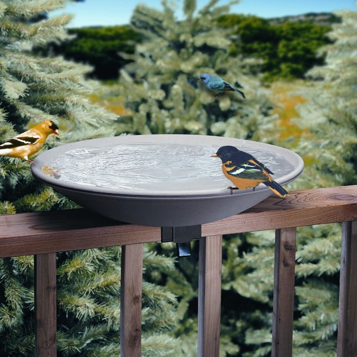 Your deck will be a welcoming place for bird friends with the Allied Precision 20 in. EZ Deck Tilt and Clean Non-Heated Bird Bath..