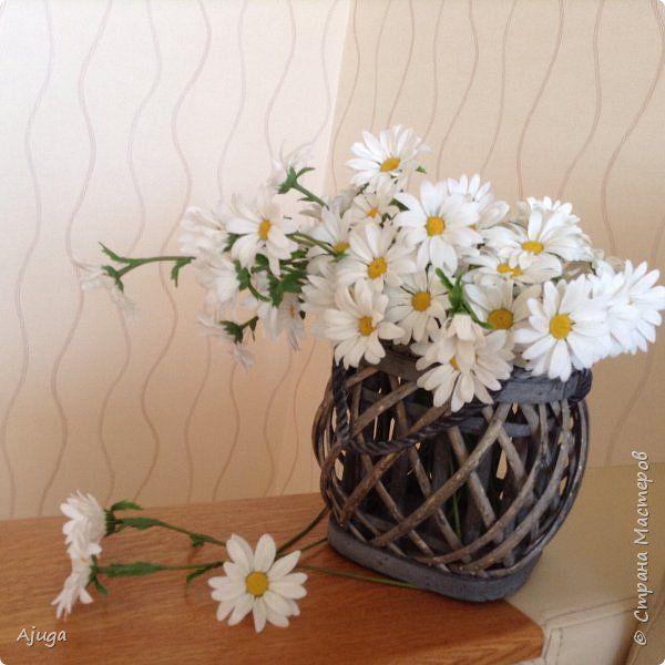 Ромашки для будущего букета полевых цветов фото 5