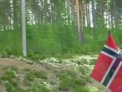 Vakantie in Zweden mooie paarse planten en natuur juli 2012 - YouTube