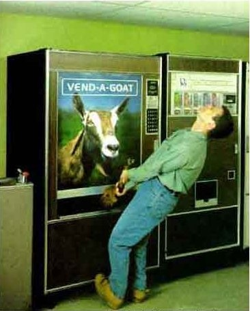 Vend A Goat Funny Goat Pictures