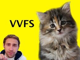 Stunt Cats: Viral Video Film School // Current