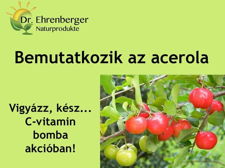 http://www.dr-ehrenberger.hu/bemutatkozik-az-acerola/ Vigyázz, kész... C-vitamin bomba akcióban!  Finom és kirobbanóan egészséges. Egy példa erre, bizonyítékként: az acerola több mint ötvenszeresét tartalmazza a narancs C-vitamin tartalmának!  acerola, dr-ehrenberger, C-vitamin, antioxidáns, C-vitamin kapszula,  koleszterinszint, reuma, vas, A-vitamin, thiamin, riboflavin, magnézium, kollagén termelődés, természetes gyógymód,  Bemutatkozik az acerola by edmond51 via slideshare