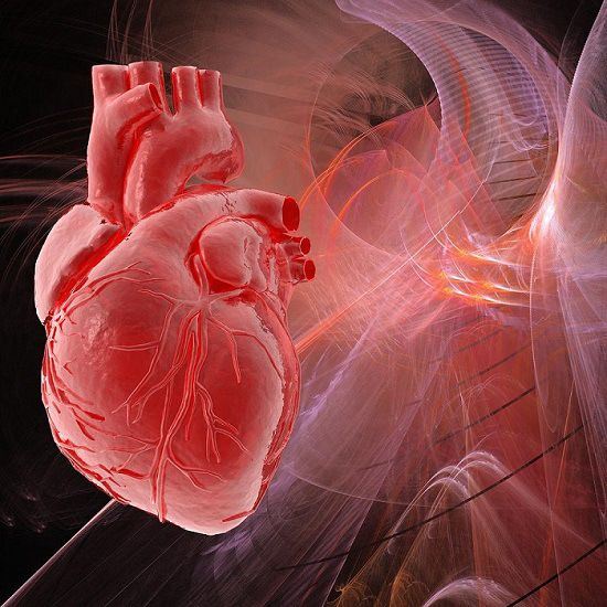 RESEARCHERS IDENTIFY THE LINK BETWEEN INHERITED DNA SEQUENCES AND HEART DISEASE.