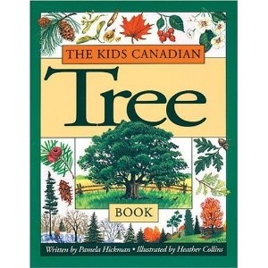 The Kids Canadian Tree Book, written by Pamela Hickman and illustrated by Heather Collins