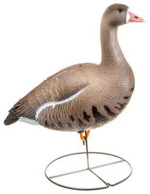 Dakota Decoy X-Treme Full-Body Specklebelly Goose Decoys