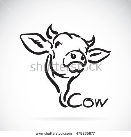 Vector of a cow logo on white background. Animal design