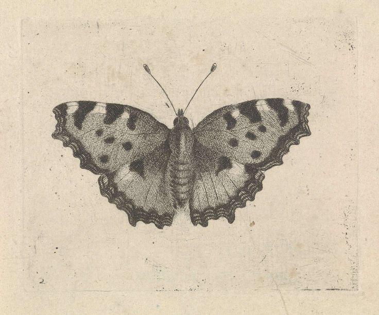 Vlinder, Pieter Lyonet, 1716 - 1789