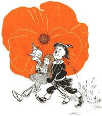 The Poppies are introduced in L. Frank Baum's first Oz book titled The Wonderful Wizard of Oz, published in 1900 and appear in the eighth chapter of the novel The Deadly Poppy Field. In the tale, these dangerous poppies bloom within the magical Land of Oz and are used as an obstacle of which involves the main characters and protagonist in the plot of the story, Dorothy Gale, her pet dog named Toto, and their three Oz companions the Scarecrow, Tin Woodman and Cowardly Lion. Yet these…