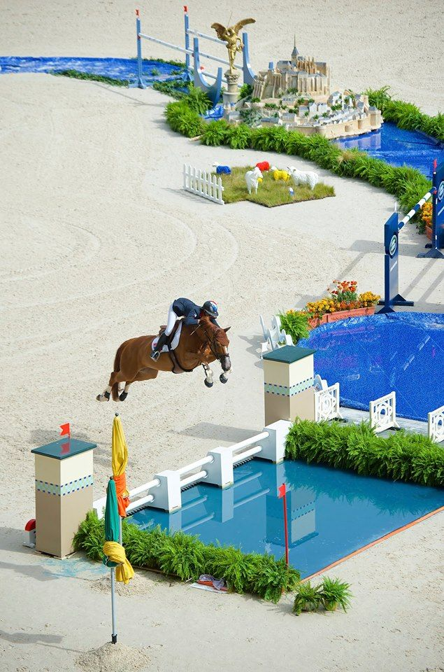 Show jumping. Amazing water jump !