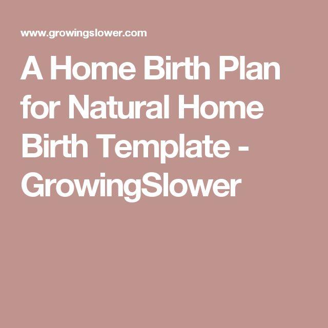 Best 25+ Birth plan sample ideas on Pinterest Birthing plan - birth plans