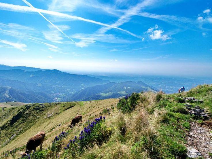 Monte Generoso - Tessin Tourismus