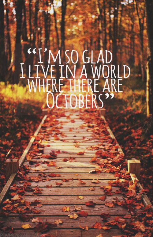 With summer coming to an ending soon, it seems to be the perfect time to look ahead and get excited for the great thing autumn brings every...