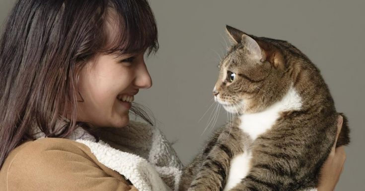 Unconditional love: Companion pets found to ease symptoms, speed recovery from mental health conditions