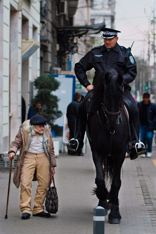 Why horses are imposing.Bucharest.Romania