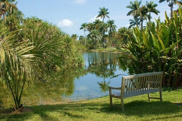 31 best images about coral gables fairchild tropical - Fairchild tropical botanic garden ...