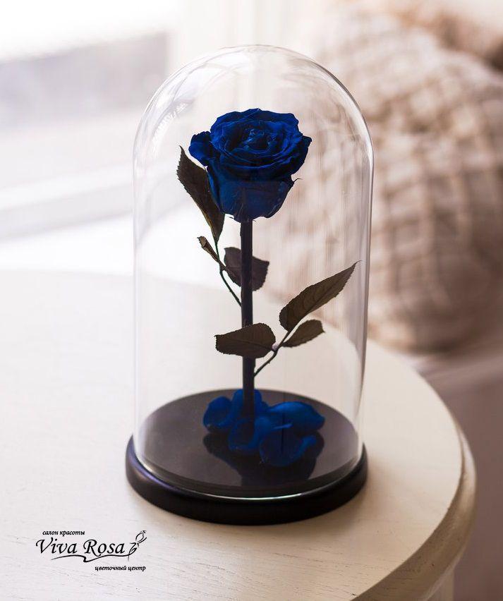 СКОРО в продаже, в ОГРАНИЧЕННОМ количестве!!! Мы подготовили ко дню Св. Валентина для Вас особенный подарок Долговечная роза в стеклянной колбе. Розы являются изящным прототипом цветка из любимого для многих мультфильма «Красавица и чудовище» - и пусть ваш сказочный мир оживет! Все розы обрабатываются вручную: влага из них выпаривается и заменяется на состав на основе глицерина, благодаря чему они остаются такими красивыми и будто «застывшими во времени». Сделать заказ 050-362-35-55 Салон кр