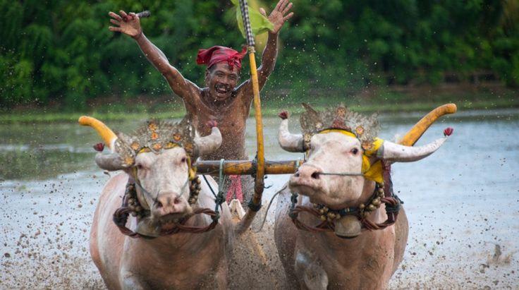Bali Smiles captured by David Metcalf Photography