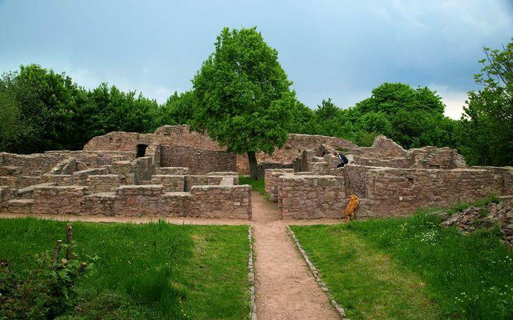 Mecsek ,Pálos kolostor romjai