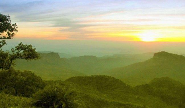 Splendid Pachmarhi Tours >>>#WildLife #PachmarhiTours #MadhyaPradesh
