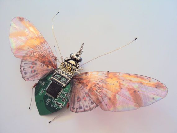 The Giant Hedgerow Rambler Fly, Fantasy Circuit Board Insect has been thoughtfully fabricated from discarded and obsolete computer circuit board, mechanical objects and electronic gadget components. She has a big wingspan of 17.5cm approximately and comes set against a white background in a sleek black box frame which measures 25.5cm x 20.5cm. Circuit board patterns are repeated on her wings as delicate wing veins. Each one of my Computer Bugs is a one off, original artwork...there are no…