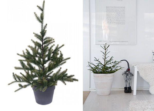 10 ways to Christmas style your kitchen Click on link and read blog post http://inredningsvis.se/julkok-inredningstips-10-fina-jul-detaljer-till-koket/  #home #interiorforyou #homedeco #room #homeandgarden #howto #inredning #beautiful #photooftheday #follow #homedecor #likes #me #cute #blogpost #christmas #trender #julinredning #julpynt #julinspiration #christmasdecor #inredning #christmaskitchen #julkök #kök #köksinredning