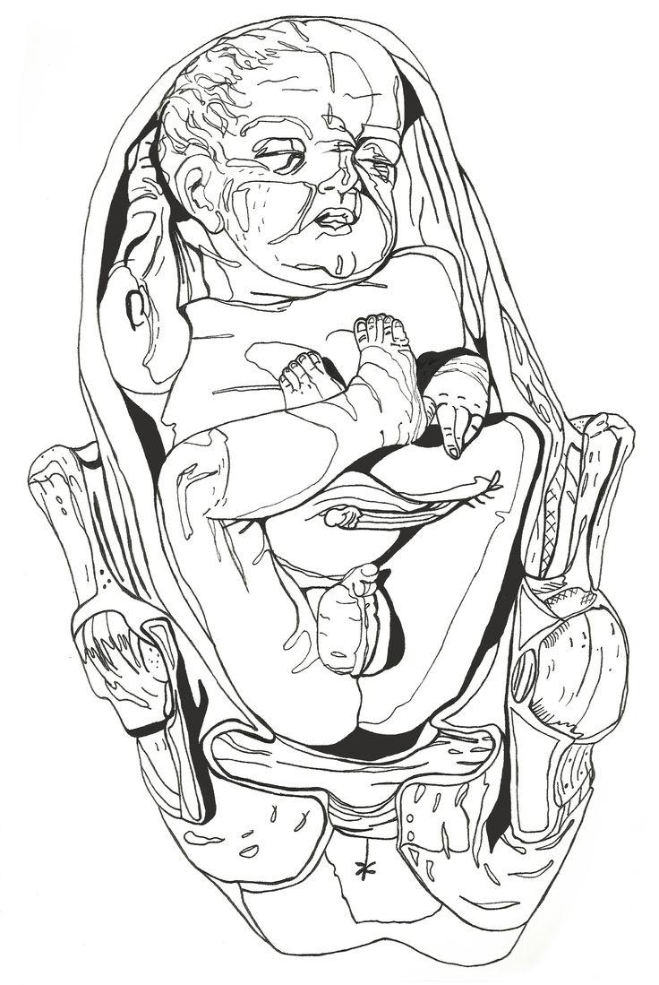 Anatomical baby 2013