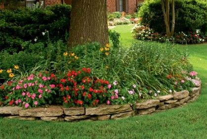 What to grow and how to landscape shady spaces