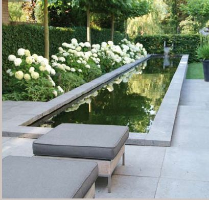 Chelsea Daily Telegraph Garden (by Christopher Bradley-Hole, 2013)- same design would work well for a lap pool, at grade by patio or deck and raised in garden beyond.