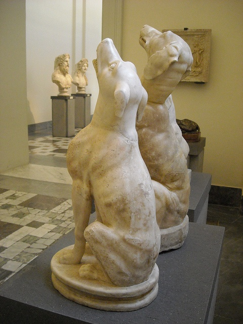 Dogs - Roman age (1st-2nd century AD) - Naples, Archaeological Museum