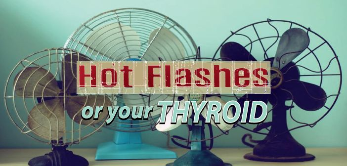 Get hot flashes and wonder about the cause? Dr. Tunis Hunt gives some insight into the link between hot flashes, stress and the thyroid   Having hot flashes??? Ƹ̵̡Ӝ̵̨̄Ʒ  Learn the role that adrenals and thyroid hormone play ▼  http://thyroidnation.com/hot-flashes-stress-thyroid/  #Thyroid #Hormones #HotFlashes
