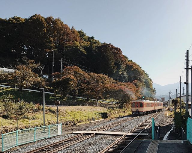 WEBSTA @ irenekly - Postcard from Haguroshita station 🚉