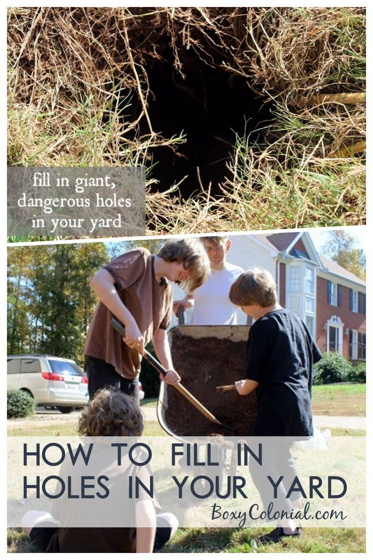 Filling In Holes In The Yard The Most Ridiculous Post Ever Yard Backyard Furniture Diy Budget Backyard