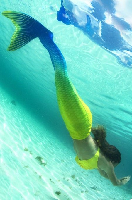 1000 Images About Fin Fun Mermaid Tails On Pinterest Mermaids Beautiful Mermaid And Swimming