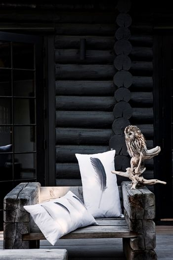 owl & feathers ~ I could use found feathers and make pillows...drapes.