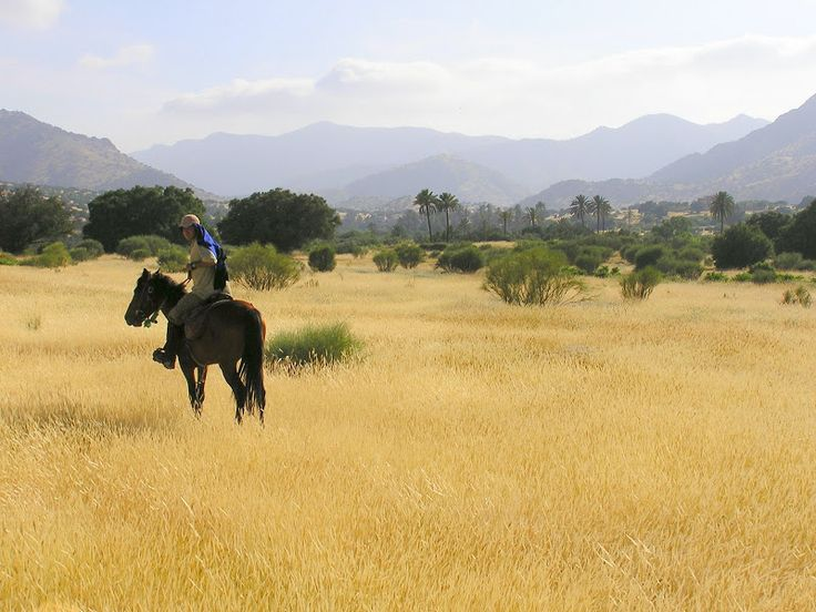 Atlas marocain  Blog de voyage www.trace-ta-route.com http://www.trace-ta-route.com/maroc-randonnee-a-cheval/  #maroc #morocco #atlas #horse #cheval