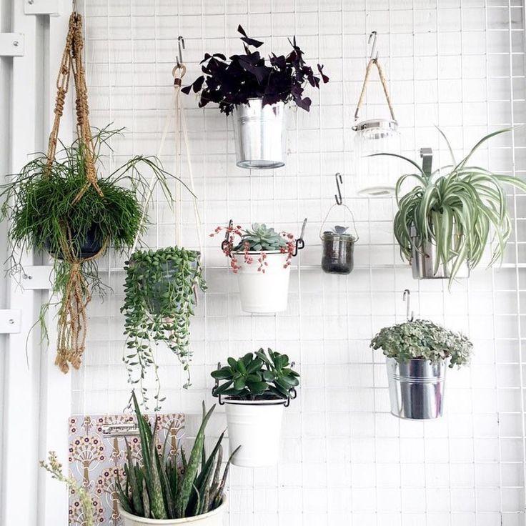 Emily Quinton ha creato questa parete verde per vasi sospesi nel suo studio, da cambiare secondo le stagioni... Non è un'idea fantastica? #Repost @emilyquinton ・・・*I love my hanging green wall in my studio!  #makelightstudio*  #casafacilestyle #casafacile #CFverdefacile