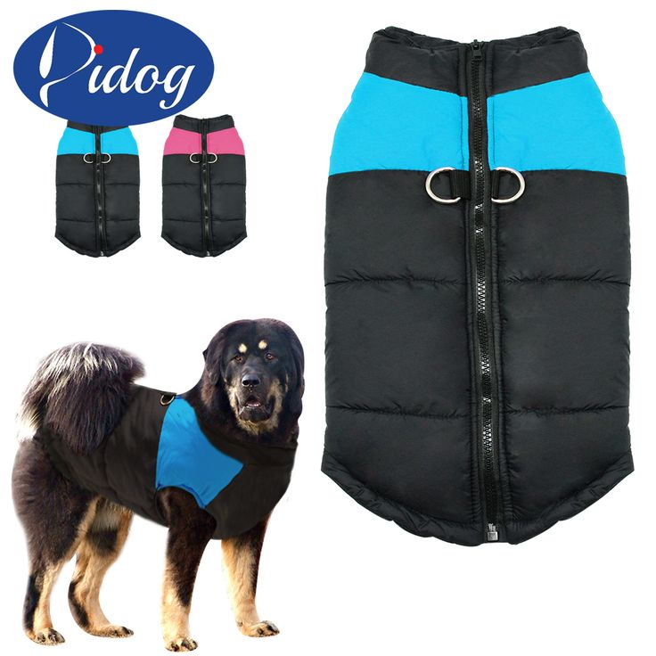 <Jan offer, click image to buy> Dog Clothes For Large Big Dog Winter Coat Jacket Dogs Vest Pet Clothing Winterproof  XXL -7XL Pink Blue Colors roupa cachorro *~* Detailed information can be found on  AliExpress.com. Just click the image