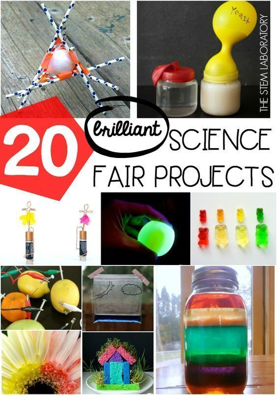 20 brilliant science fair projects for kids! Fun science fair ideas for preschool, kindergarten, first grade and second grade.