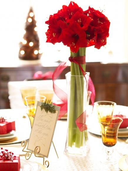 78 best christmas centerpieces images on pinterest for Amaryllis christmas decoration