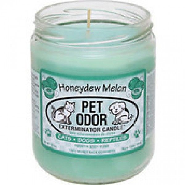 Honeydew Melon Pet Odor Exterminator Candle