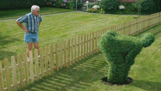 Как можно закрыть соседское окно выходящее в мой двор