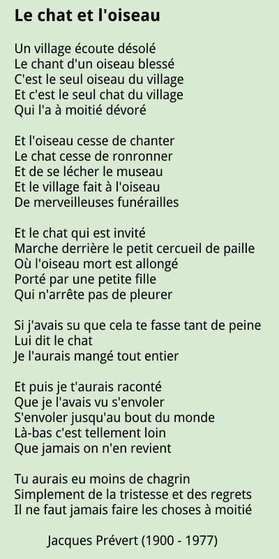 chat online francais Le Tampon