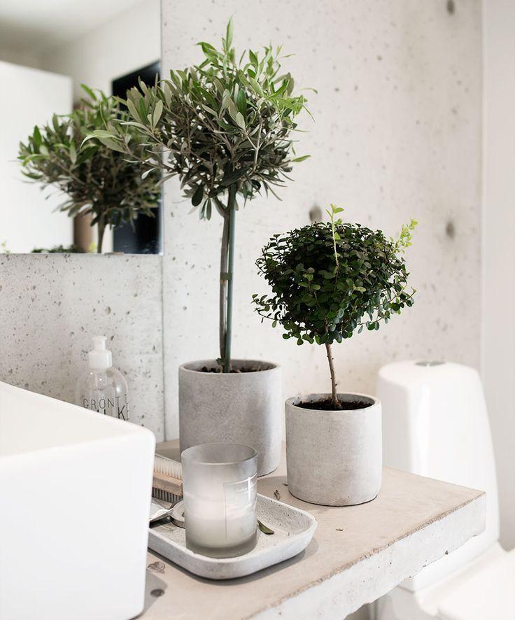 25+ beste ideeën over Badkamer planten op Pinterest - Appartement ...