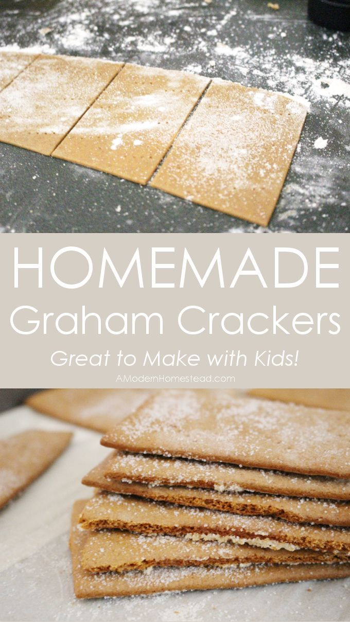 These homemade graham crackers are an easy and fun project to make with kids! The dough comes together very easily.