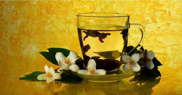 7 Outstanding Health Benefits Of Jasmine Green Tea